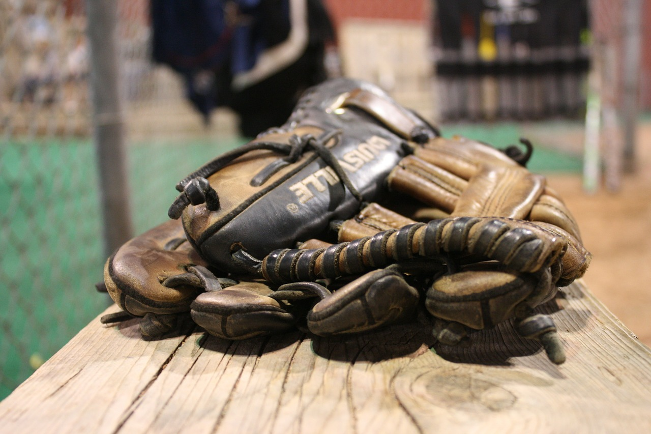 gloves, baseball, back-catcher